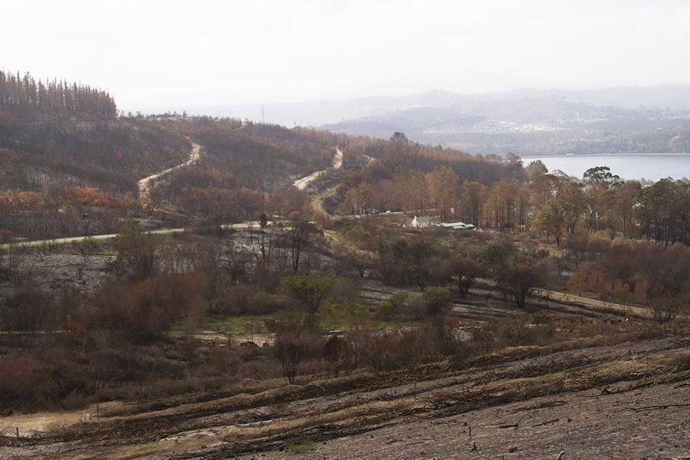 Knysna Fires of 2016